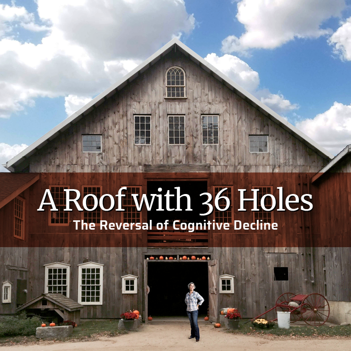 Roof_with_36_Holes_v1